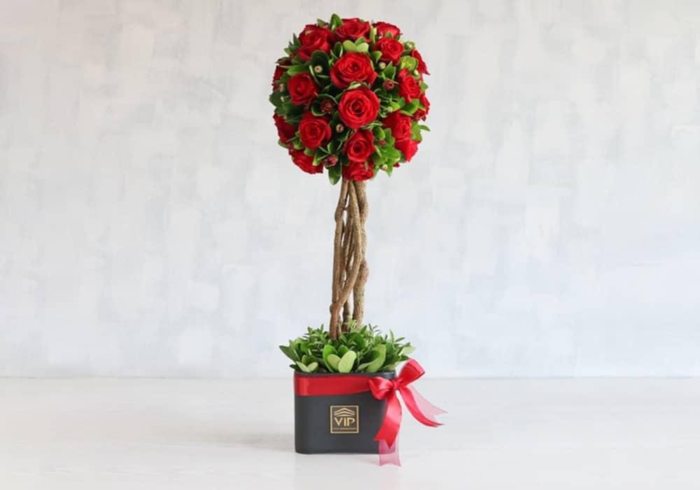 خرید گل رز ارزان